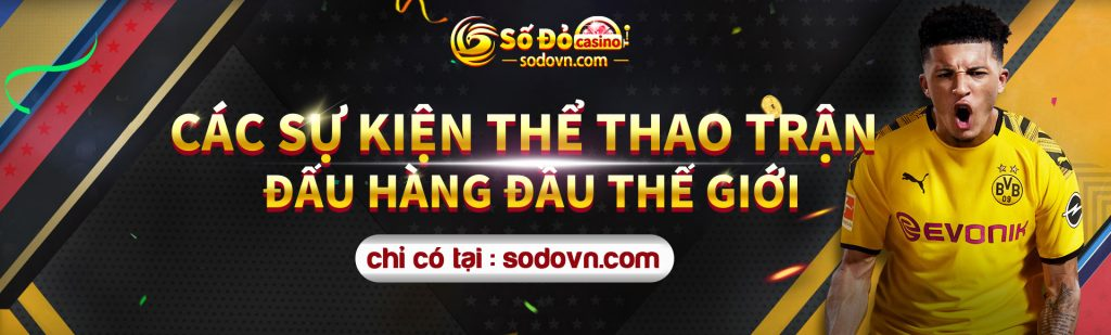 Banner thể thao 1